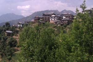 My village in Himachal Pradesh, India.
